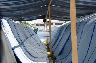 Cholera tents in Carrefour, a suburb of Port au Prince, Haiti. The country has endured the worst epidemic of the bacterial disease in modern history.