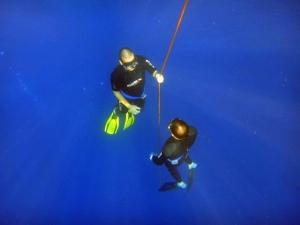 free diving 10