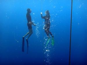 free diving 4