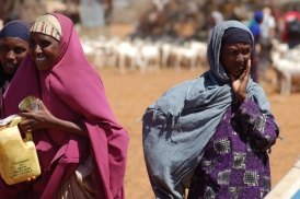 Women talk as their animals drink in drought-stricken East Africa